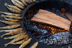 Smelt fish on barbecue. Smelt fish being grilled on an outdoor barbecue Stock Photos