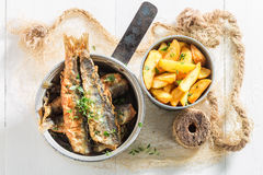 Smelt fish and chips with herbs and salt Stock Photos