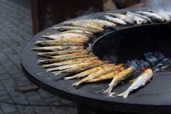 Smelt fish on grill, outdoor cooking. Smelt fish being grilled on an outdoor barbecue Stock Photos