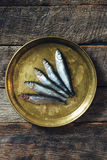 Smelt fishes in the plate Royalty Free Stock Photography