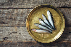 Smelt fishes Royalty Free Stock Photography