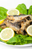 Smelt with lemon slices and green salad Royalty Free Stock Photo