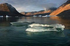 Smeltend Ijs - Fjord Groenland - Scoresbysund Royalty-vrije Stock Fotografie