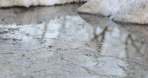 Smeltend sneeuw en ijs stock footage