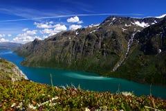 Smeltende Gletsjer stock fotografie