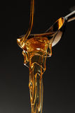 Smeltende honing Stock Fotografie