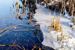 Smeltende ijs en rivierbies Stock Afbeeldingen