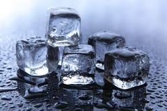 Smeltende ijsblokjes Stock Foto's