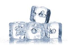 Smeltende ijsblokjes met waterdauw Stock Foto