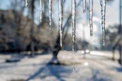 Smeltende ijskegels en dalingen van water De dag van de winter Royalty-vrije Stock Afbeeldingen