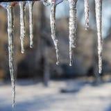 Smeltende ijskegels en dalingen van water De dag van de winter Stock Foto