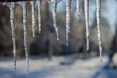 Smeltende ijskegels en dalingen van water De dag van de winter Royalty-vrije Stock Foto