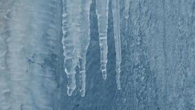 Smeltende ijskegels op de straat in de winter tijdens de dooi Dalingen van waterdaling van de ijskristallen Bevroren muur en pijp stock videobeelden