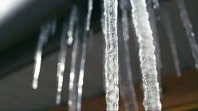 Smeltende ijskegels op zon stock videobeelden