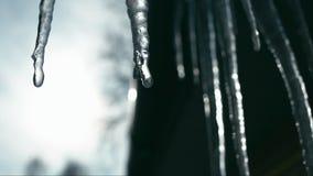 Smeltende ijskegels op zon stock footage