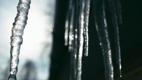Smeltende ijskegels op zon Langzame Motie stock footage