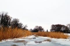 Smeltende rivier Royalty-vrije Stock Foto's