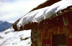 Smeltende sneeuw Stock Foto's