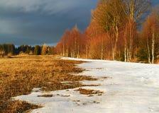 Smeltende sneeuw in de vroege lente Stock Afbeeldingen