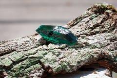smeraldo Immagine Stock