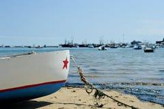 Smerig op strand Royalty-vrije Stock Foto
