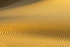 Smerigli i reticoli nel dessert - dune di sabbia Immagine Stock