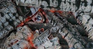 Smeulende steenkolen van vuur op outdoor? stock videobeelden