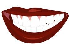 Smile royalty free illustration