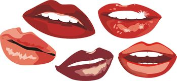 Smile. The romantic kisses. Vector Royalty Free Stock Image
