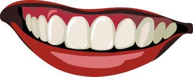 Smile. Vector illustration of  joyful Smile Stock Images