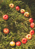 Smile from apples on the grass Royalty Free Stock Photography