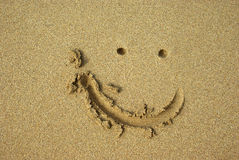 Smile on the beach Stock Photos