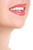 Smile of a beautiful young woman Royalty Free Stock Photography