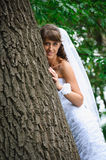 Smile bride in white dress standing near tree Royalty Free Stock Images