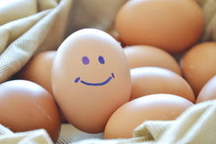 Smile brown hen egg in bag. Smile brown hen egg in fabric bag Stock Photo