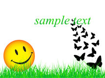 Smile and butterflies Stock Images