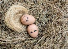 Smile egg Stock Photos