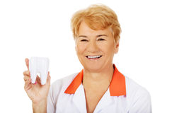 Smile elderly female dentist holding big tooth model Royalty Free Stock Photo