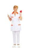 Smile elderly female doctor or nurse holding red toy heart.  stock photo
