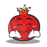 Smile face pomegranate cartoon character style. Vector illustration Royalty Free Stock Photography