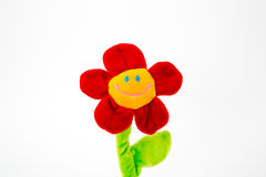 Smile flower. Stock Images