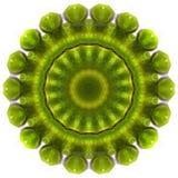 Smile green soya on white circle background. Kaleidoscope, mandala colorful background for creative design Stock Photography