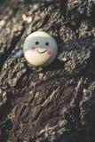 Smile icon miniature on tree. Twig Royalty Free Stock Photos
