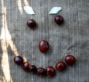A smile laid out of chestnuts on a cloth. In a sunny day Royalty Free Stock Photos