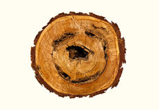 Smile-shaped log of wood. Smile-shaped log of wood isolate on white royalty free stock photos