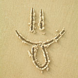 Smile sign on a sand Royalty Free Stock Photography