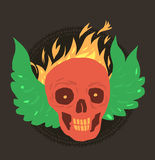 Smile skull with fire and green wing Stock Image