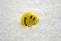 Smile on the snow Royalty Free Stock Image