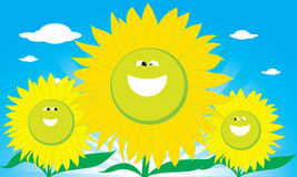 Smile Sun Flower Stock Photo