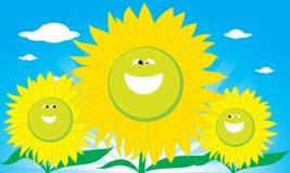 Smile Sun Flower. The abstract of Smile Sun Flower Stock Photo